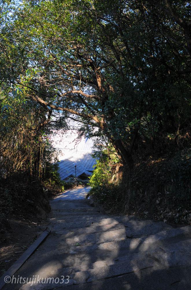 カメラマン小林直行 瀬戸内国際芸術祭 直島の自然風景5