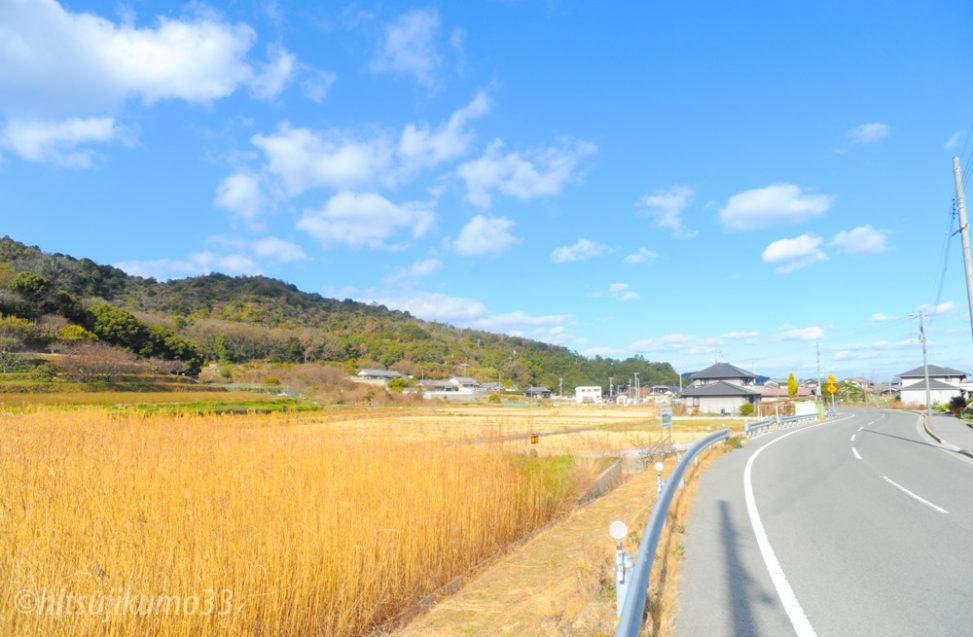 カメラマン小林直行 瀬戸内国際芸術祭 直島の自然風景10