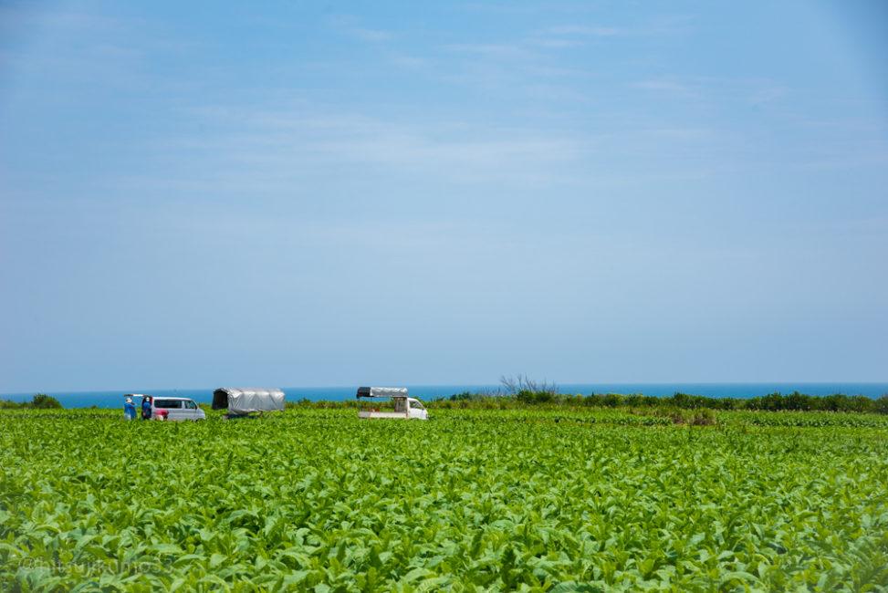 伊計島沖縄の原風景3小林直行