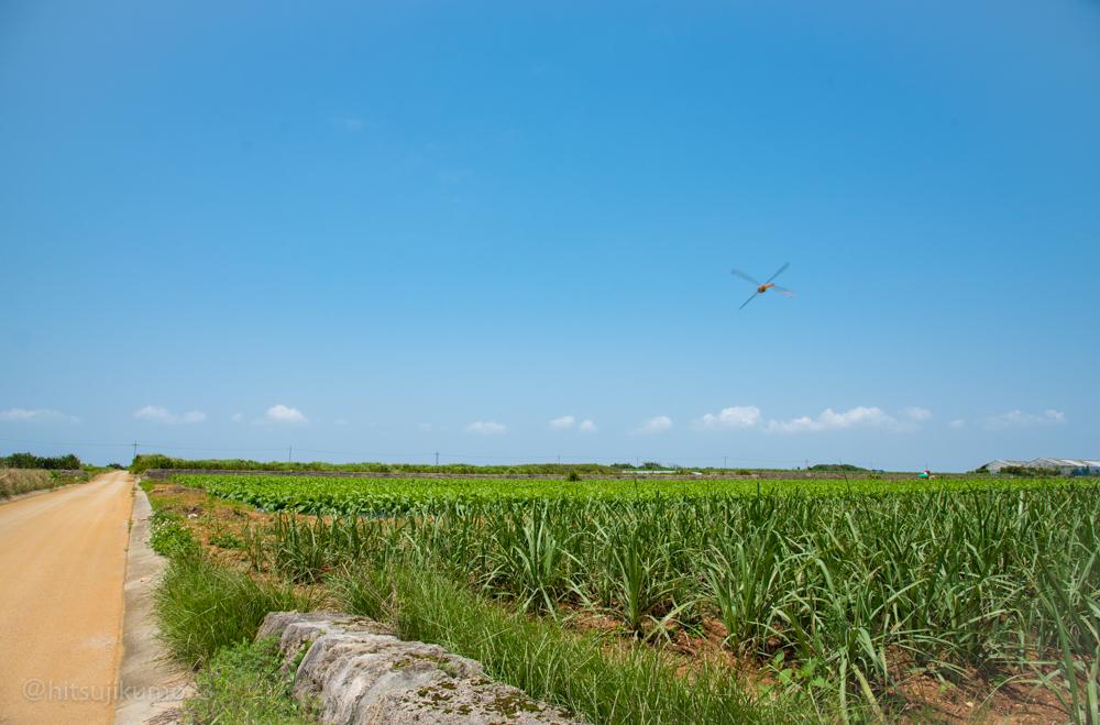 伊計島沖縄の原風景4小林直行