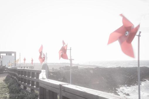 済州島10